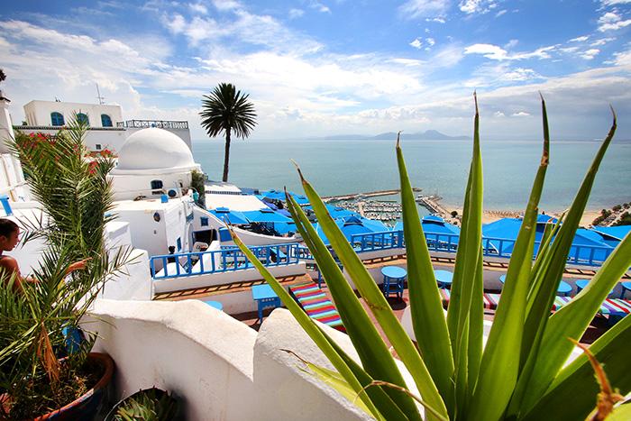 Популярные экскурсии или «must see» в Тунисе